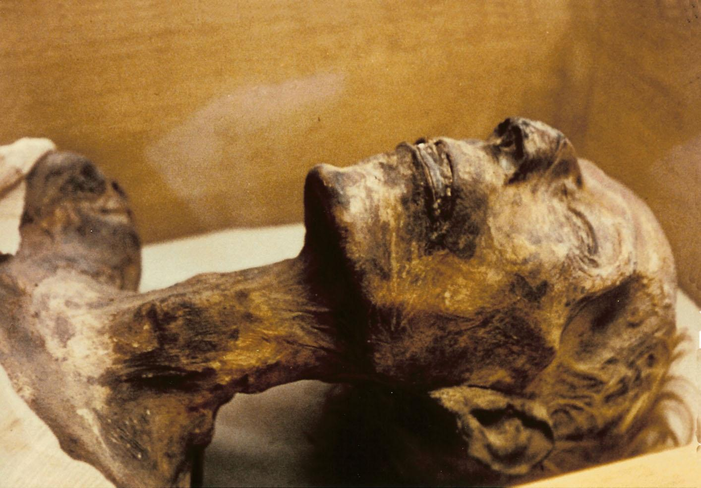 Mummy_of_Ramesses_II.jpg