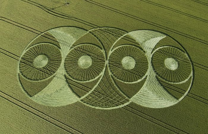 circles-on-fields-54.jpg